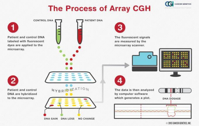 Schema del processo d array CGH